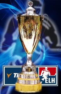 Mistrovský pohár